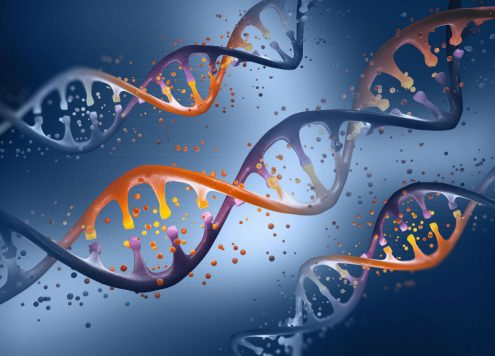 Stem Cells Preservation
